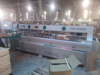 MÁY KHOAN NGANG CNC 2 ĐẦU 2500MM CNC-2500B2 772